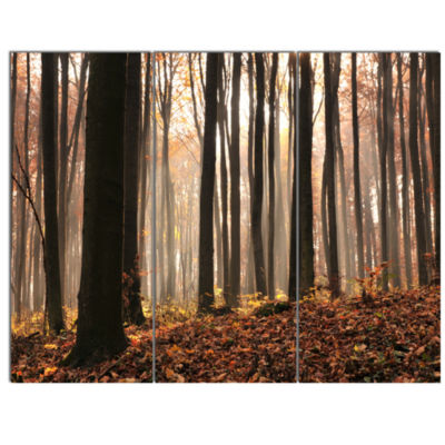 Designart Dark Thick Woods In Fall Forest Modern Forest Canvas Art - 3 Panels