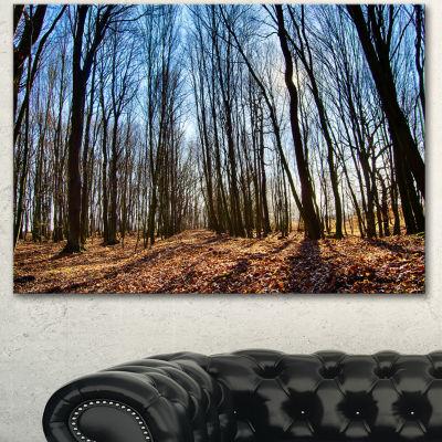 Designart Dark Trees In Forest At Sunrise Forest Canvas Art Print - 3 Panels