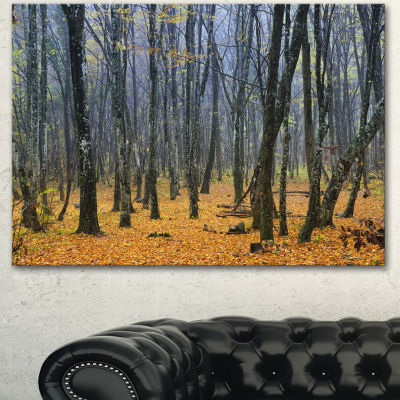 Designart Dark Woods In Autumn Forest Modern Forest Canvas Art - 3 Panels