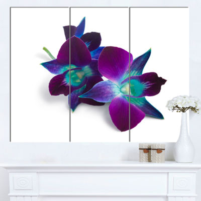 Designart Deep Purple Orchid Flowers On White Flowers Canvas Wall Artwork - 3 Panels