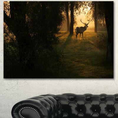 Designart Deer In Sunset In Deep Forest Large Forest Canvas Art Print