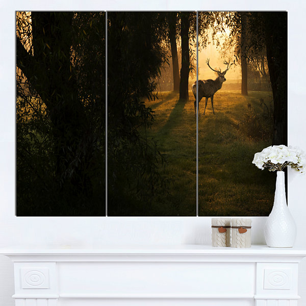 Designart Deer In Sunset In Deep Forest Large Forest Canvas Art Print - 3 Panels