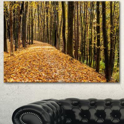 Designart Dense Autumn Forest Woods Modern ForestCanvas Art - 3 Panels