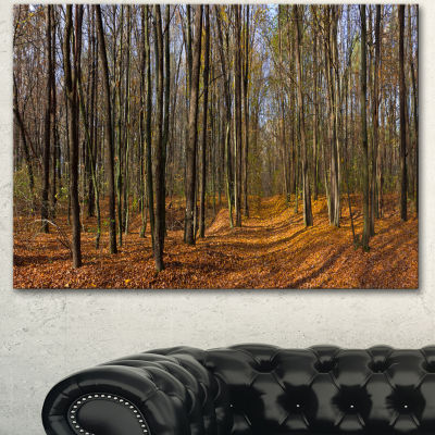 Designart Dense Fall Forest Panorama Forest CanvasArt Print - 3 Panels