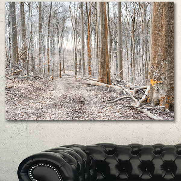 Design Art Dense Forest In The Winter PhotographyModern Forest Canvas Art
