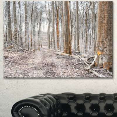 Designart Dense Forest In The Winter PhotographyModern Forest Canvas Art - 3 Panels