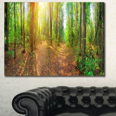 Designart Dense Forest Panorama Landscape CanvasArt Print - 3 Panels