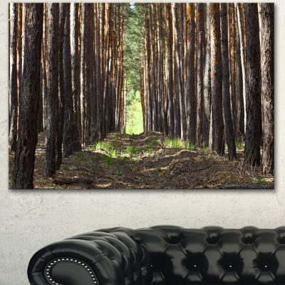 Designart Even Rows Of Pine Tree Forest Modern Forest Canvas Art - 3 Panels