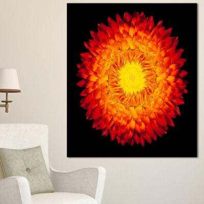 Designart Everlasting Straw Flower On Black Flowers Canvas Wall Artwork - 3 Panels