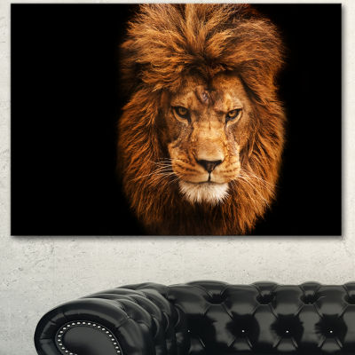 Designart Face Of Male Lion On Black Abstract Canvas Art Print - 3 Panels