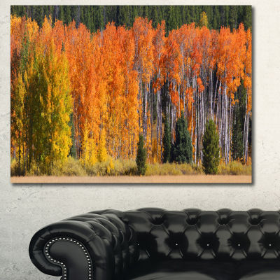Designart Fall Trees Panorama Landscape Canvas ArtPrint