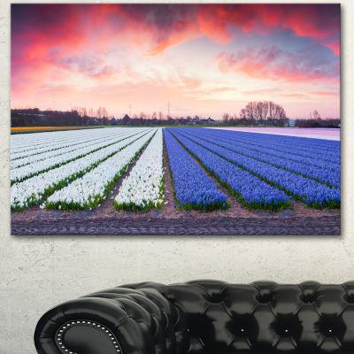 Designart Fields Of Blooming Hyacinth Flowers Landscape Canvas Art Print - 3 Panels