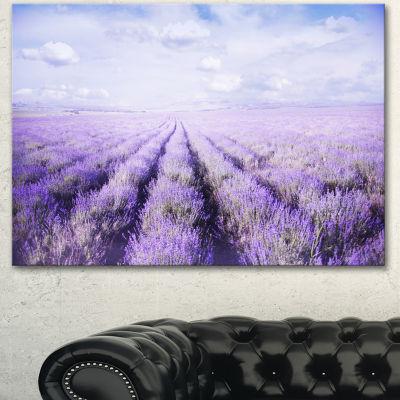 Designart Fields Of Lavender Against Blue Sky Landscape Canvas Art Print