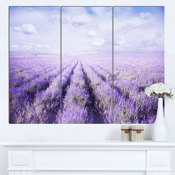 Designart Fields Of Lavender Against Blue Sky Landscape Canvas Art Print - 3 Panels