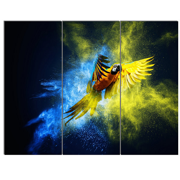 Designart Flying Parrot Over Color Burst Contemporary Animal Art Canvas - 3 Panels