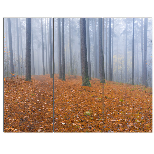 Designart Foggy Dense Forest In Autumn Modern Forest Canvas Art - 3 Panels
