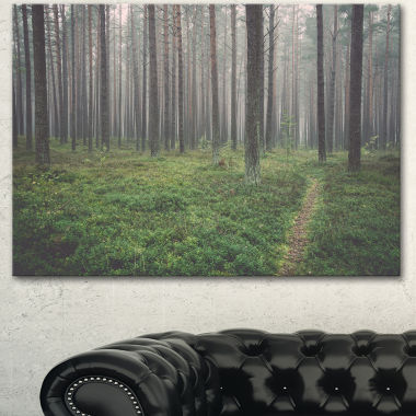 Designart Foggy Dense Forest With Grass Modern Forest Canvas Art