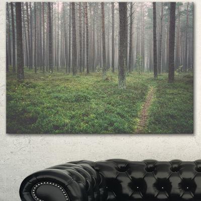Designart Foggy Dense Forest With Grass Modern Forest Canvas Art - 3 Panels