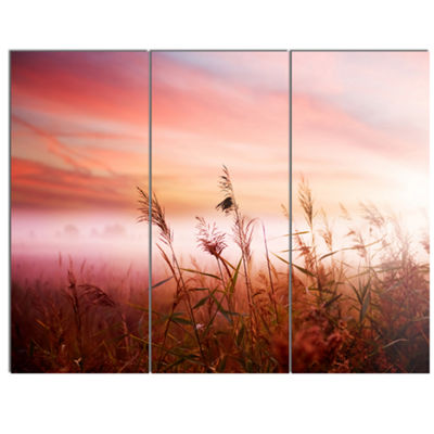 Designart Foggy Land With Early Morning Mist Landscape Canvas Art Print - 3 Panels