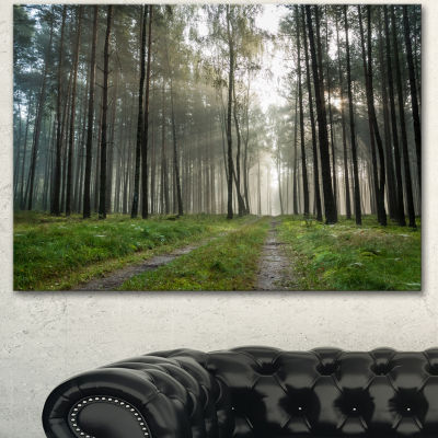 Designart Footpath In Foggy Forest At Sunset Modern Forest Canvas Art - 3 Panels