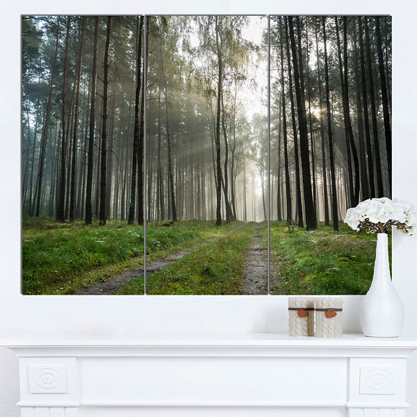 Design Art Footpath In Foggy Forest At Sunset Modern Forest Canvas Art - 3 Panels
