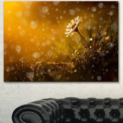 Designart Forest After Rain During Sunset Large Floral Canvas Art Print