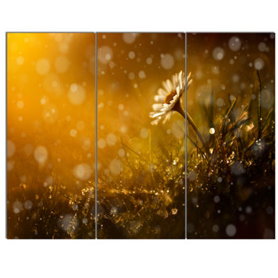 Designart Forest After Rain During Sunset Large Floral Canvas Art Print - 3 Panels