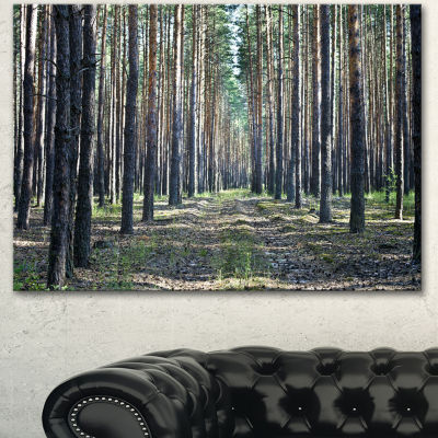 Designart Forest Road In Thick Woods Modern ForestCanvas Art - 3 Panels