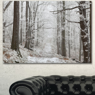 Designart Forest Trail On Winter Morning Large Forest Canvas Art Print