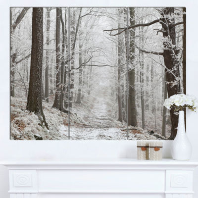 Designart Forest Trail On Winter Morning Large Forest Canvas Art Print - 3 Panels