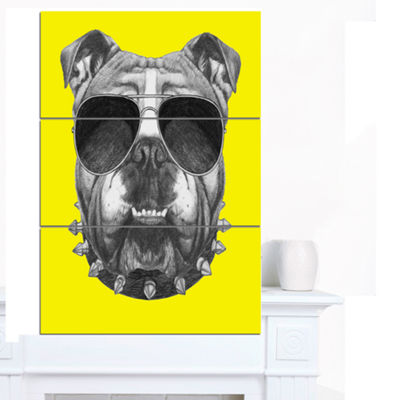 Designart Funny English Bulldog With Collar Contemporary Animal Art Canvas - 3 Panels