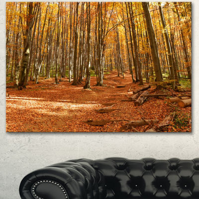 Designart Colorful Fall Forest With Fallen LeavesModern Forest Canvas Art - 3 Panels