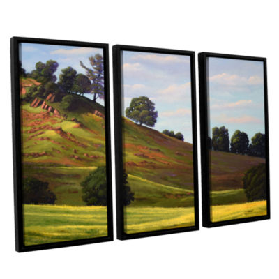 Brushstone Spring Day 3-pc. Floater Framed CanvasWall Art