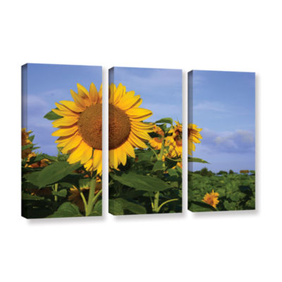 Brushstone Sunflower (garden) 3-pc. Gallery Wrapped Canvas Wall Art