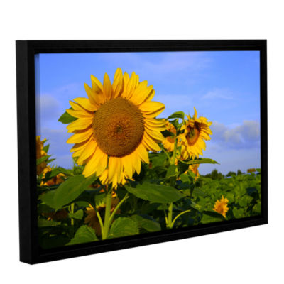 Brushstone Sunflower (garden) Gallery Wrapped Floater-Framed Canvas Wall Art