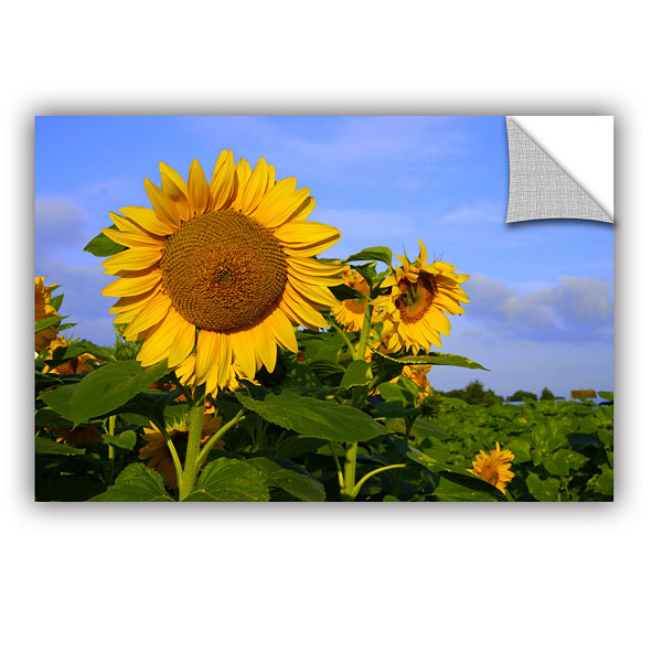Brushstone Sunflower (garden) Removable Wall Decal