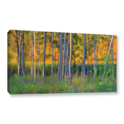 Brushstone Stumpy Basin Gallery Wrapped Canvas Wall Art