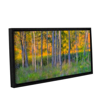 Brushstone Stumpy Basin Gallery Wrapped Floater-Framed Canvas Wall Art