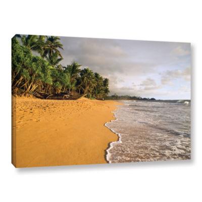 Brushstone Sri Lankan Beach Gallery Wrapped CanvasWall Art