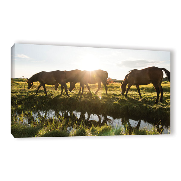 Brushstone Sun Glares Gallery Wrapped Canvas WallArt