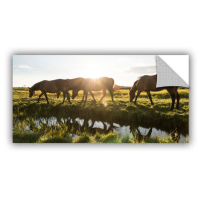 Brushstone Sun Glares Removable Wall Decal