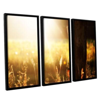 Brushstone Summertime 3-pc. Floater Framed CanvasWall Art