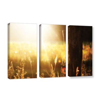 Brushstone Summertime 3-pc. Gallery Wrapped CanvasWall Art