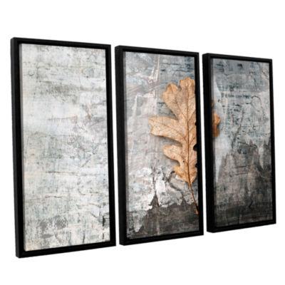 Brushstone Still Life Leaf 3-pc. Floater Framed Canvas Wall Art