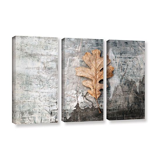 Brushstone Still Life Leaf 3-pc. Gallery Wrapped Canvas Wall Art