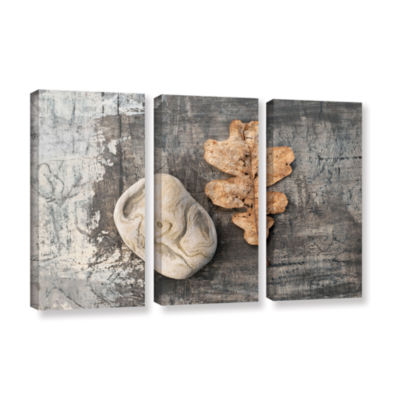 Brushstone Still Life Leaf Stone 3-pc. Gallery Wrapped Canvas Wall Art