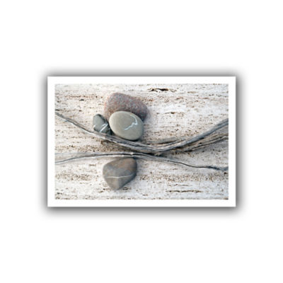 Brushstone Still Life Sticks Stones Canvas Wall Art