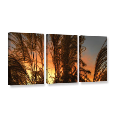 Brushstone Summer Grass 3-pc. Gallery Wrapped Canvas Wall Art
