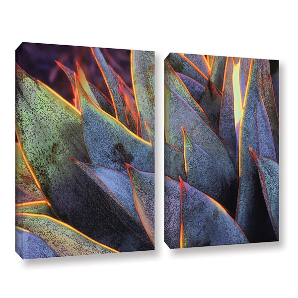 Brushstone Sun Succulent 2-pc. Gallery Wrapped Canvas Wall Art