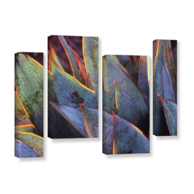 Brushstone Sun Succulent 4-pc. Gallery Wrapped Staggered Canvas Wall Art